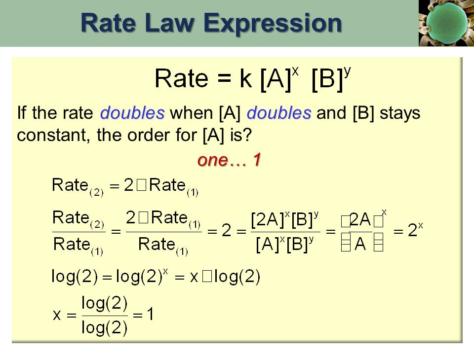 Rate Law Expression If the rate doubles when [A] doubles and [B] stays constant, the order for [A] is